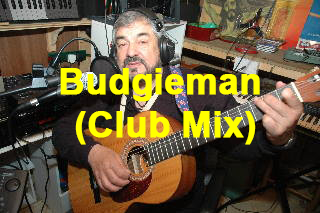 Budgieman (Club Mix) by Don Crown